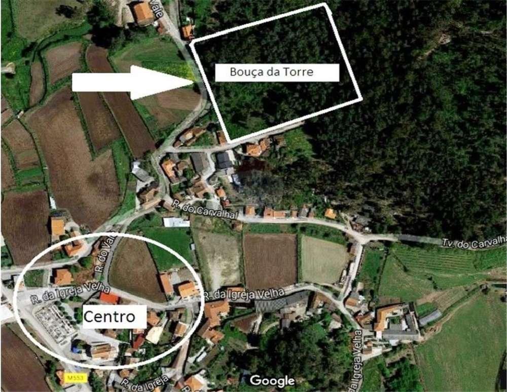 Faria Barcelos terreno foto #request.properties.id#