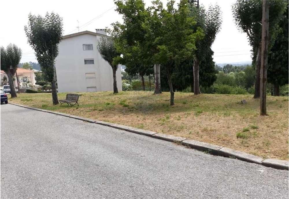 Eira Cinfães terrain picture 149083