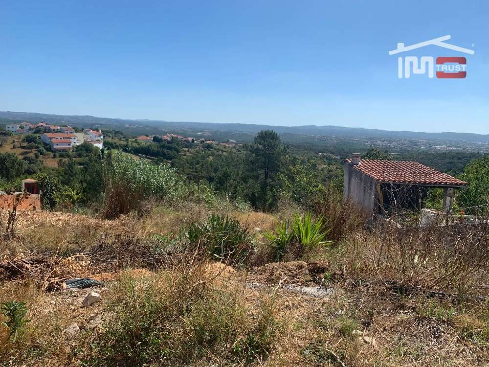 Carregueiros Tomar terrain picture 150606