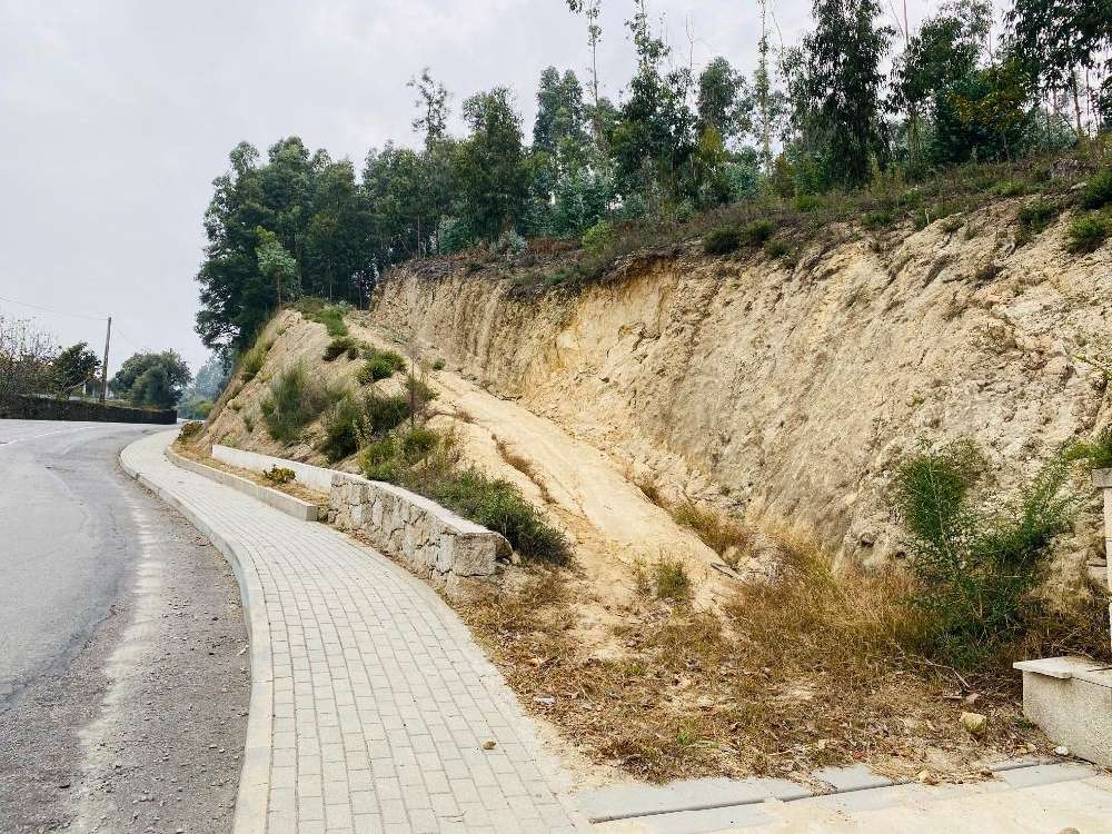 Tamel Barcelos terrain picture 151285