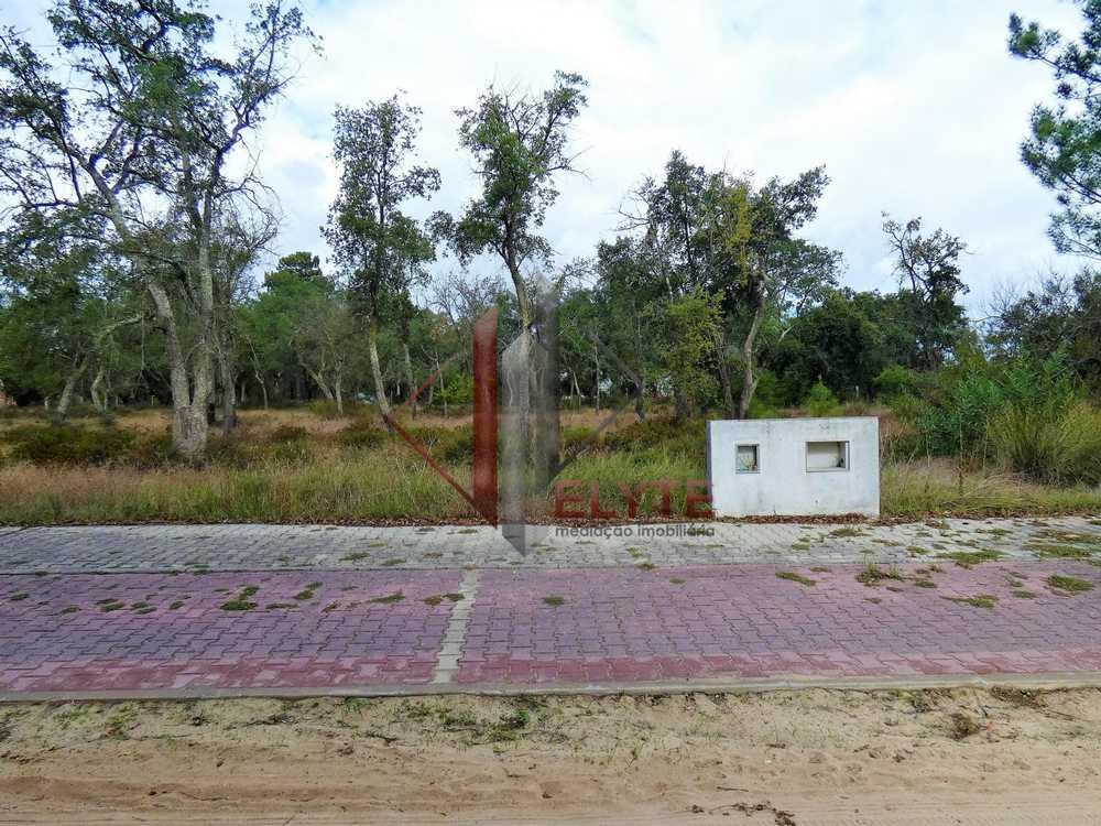 Casal da Vinhita Santarém terrain picture 153683