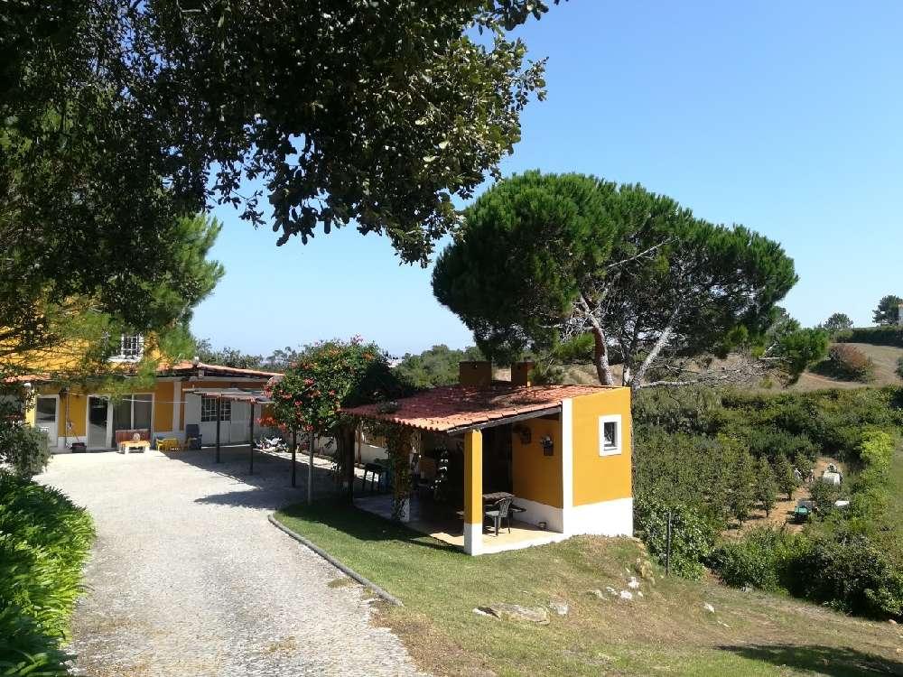 Usseira Óbidos villa picture 153656