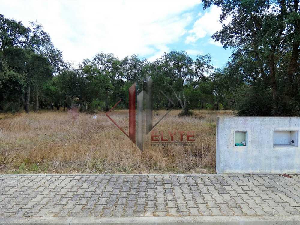 Santarém Santarém terrain picture 153682