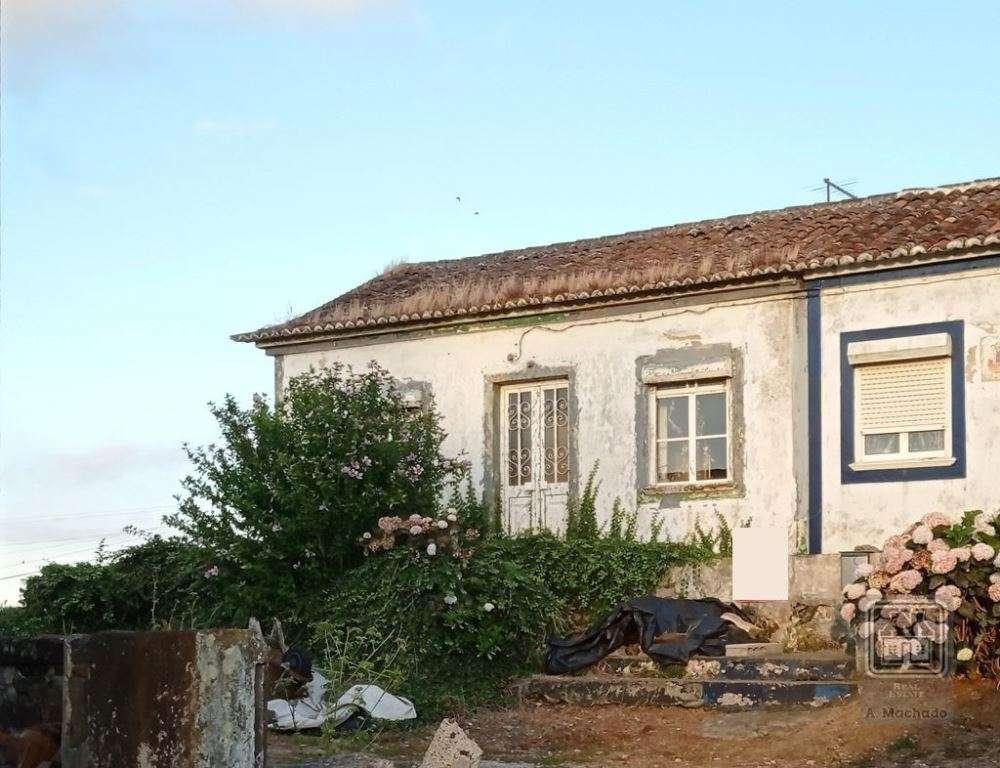 Fontinhas Praia Da Vitória Haus Bild 151351