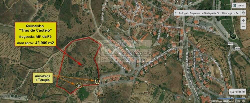 Alfândega da Fé Alfândega Da Fé Grundstück Bild 151567