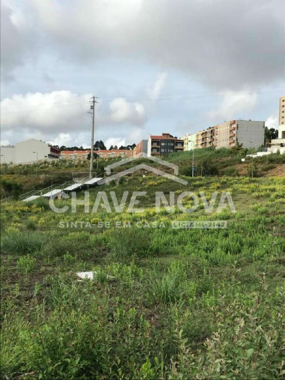 Lourosa Santa Maria Da Feira terrain picture 152094