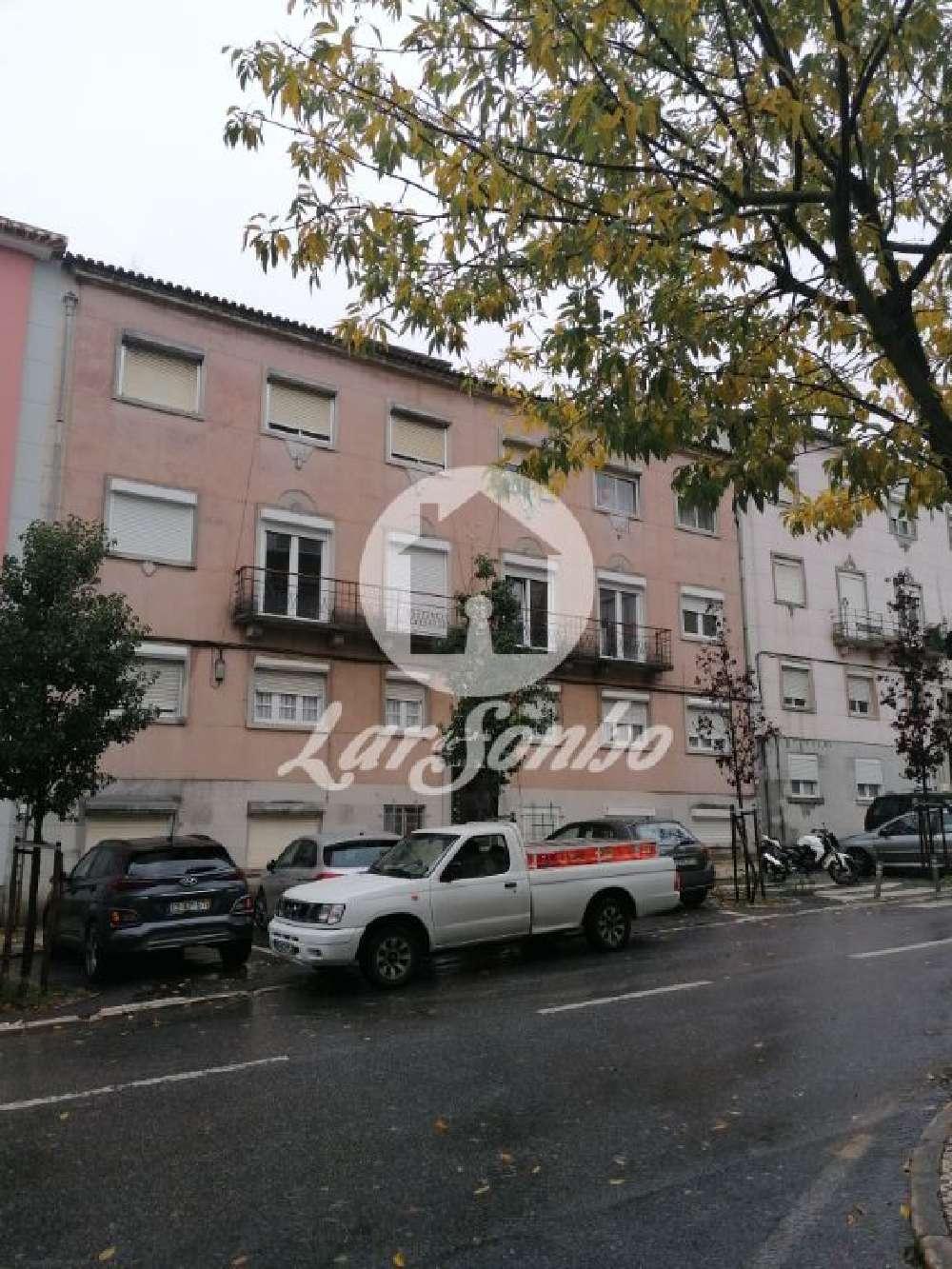 Amadora Amadora apartment picture 152830