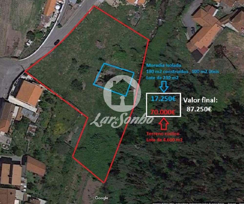 Ruivães Vila Nova De Famalicão terrain picture 151782