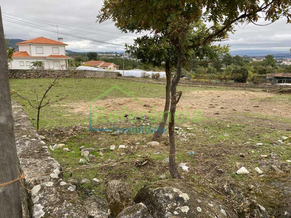 Borbelinha Vila Real terrain photo 150984