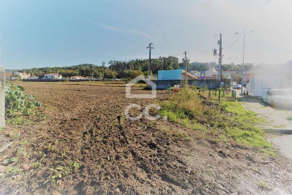 Delães Vila Nova De Famalicão terrain picture 152454
