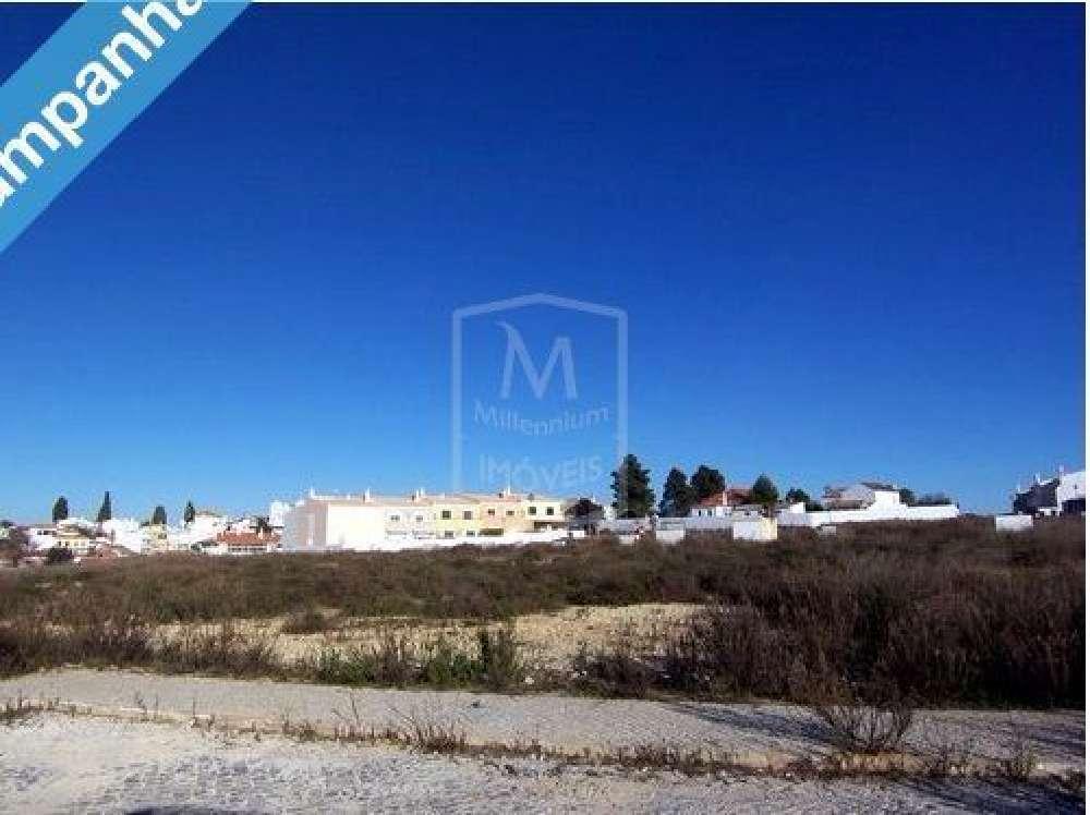 Estombar Lagoa (Algarve) terrain picture 153499