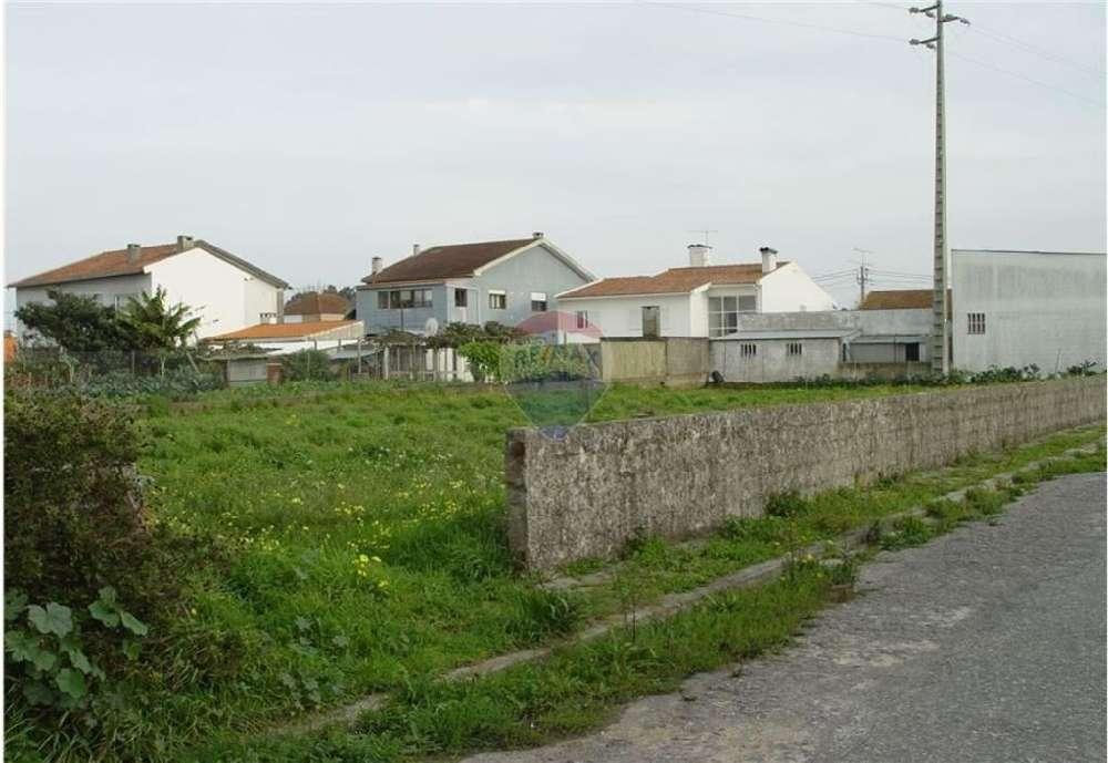 Aveiro Aveiro terrain picture 151969