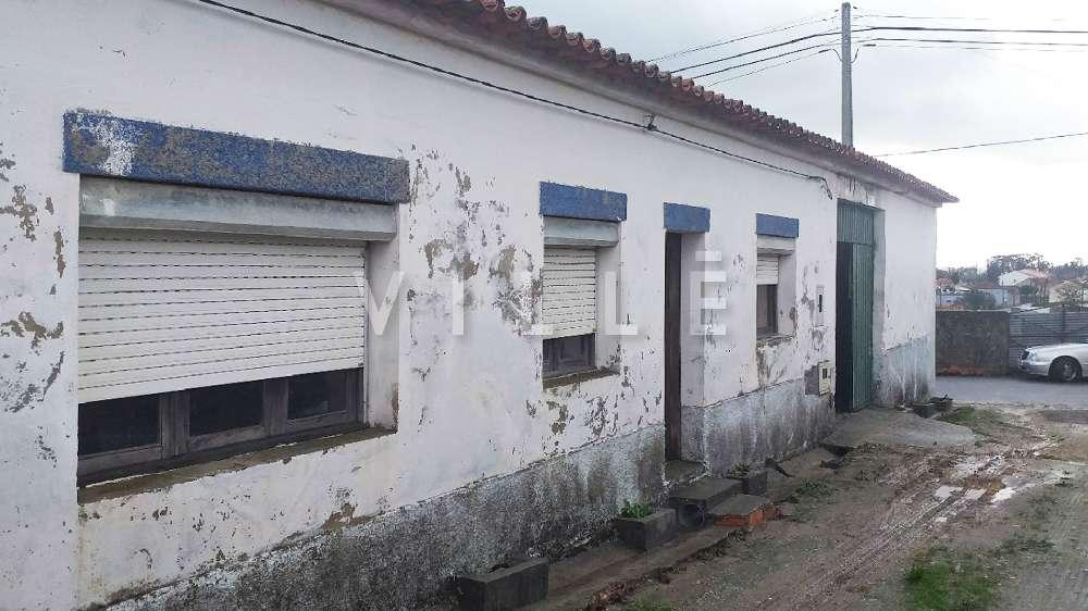 Aveiro Aveiro Haus Bild 150978