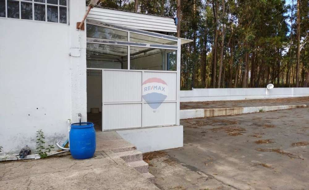 Cerca da Oliveira Almodôvar casa foto #request.properties.id#