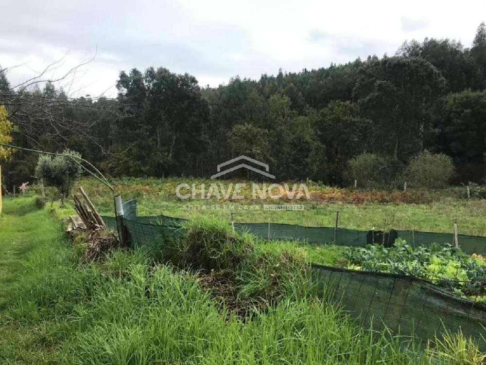 Canedo Santa Maria Da Feira terreno foto #request.properties.id#