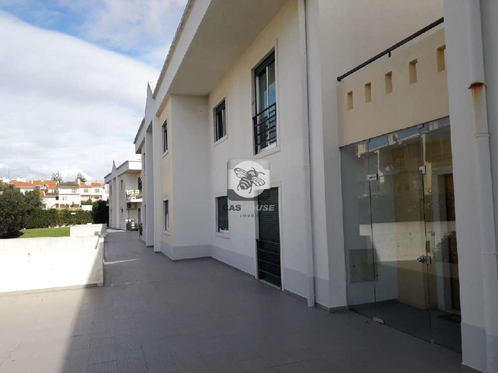 Alcabideche Cascais apartment picture 155250