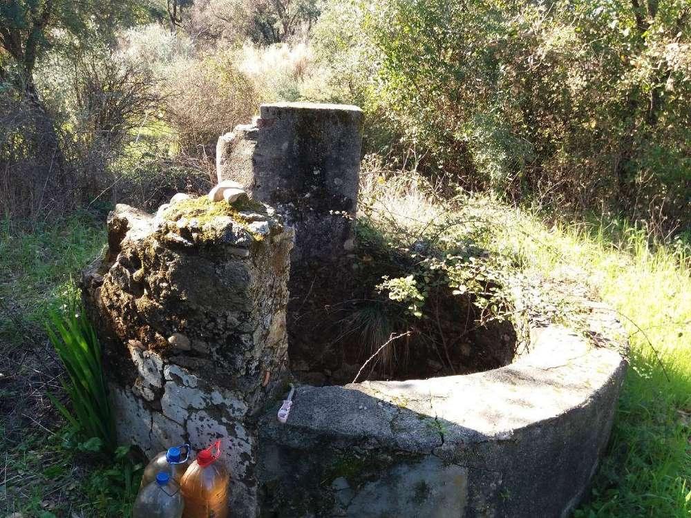 Montalvo Constância terrain picture 155223