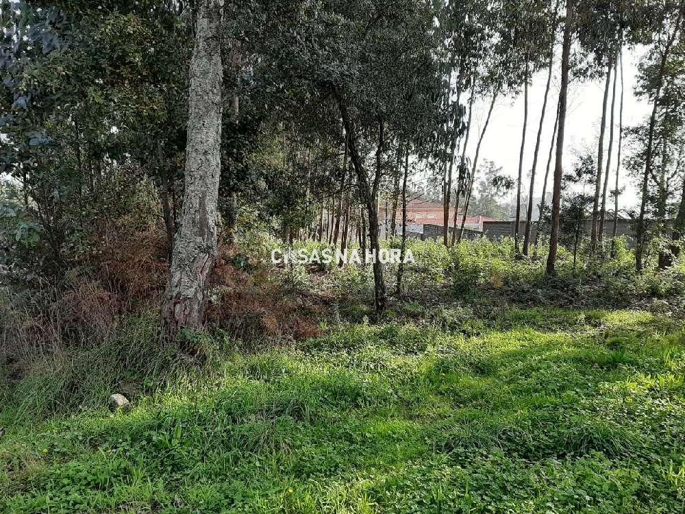 Argoncilhe Santa Maria Da Feira terreno foto #request.properties.id#