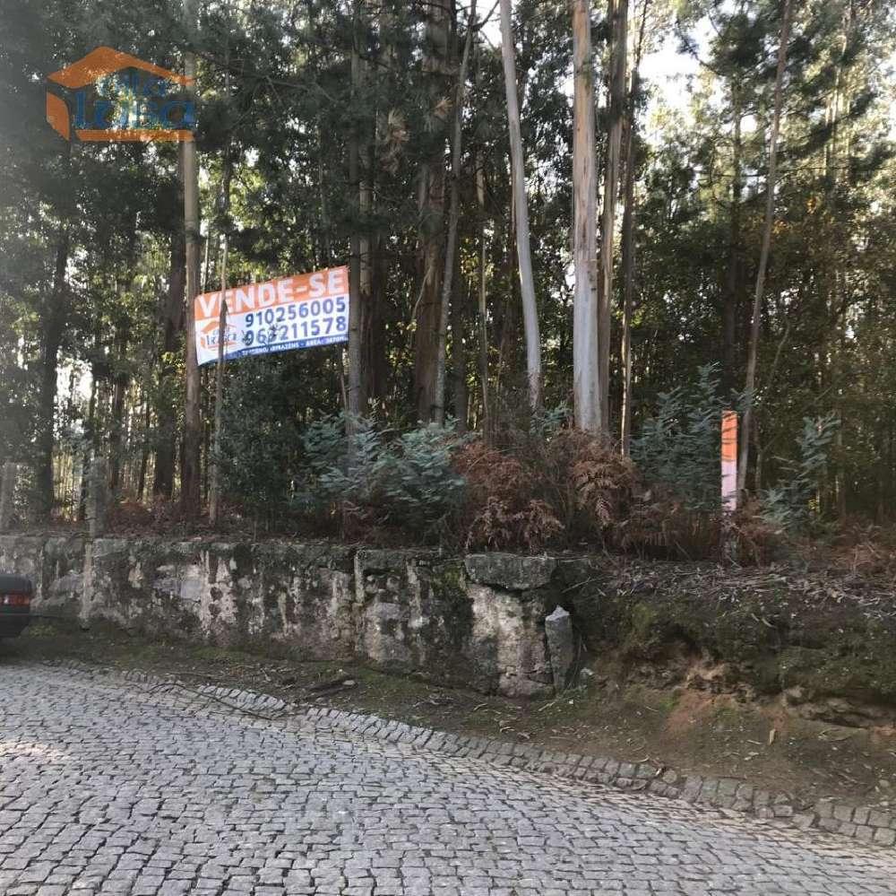 Perosinho Vila Nova De Gaia terrain picture 153968
