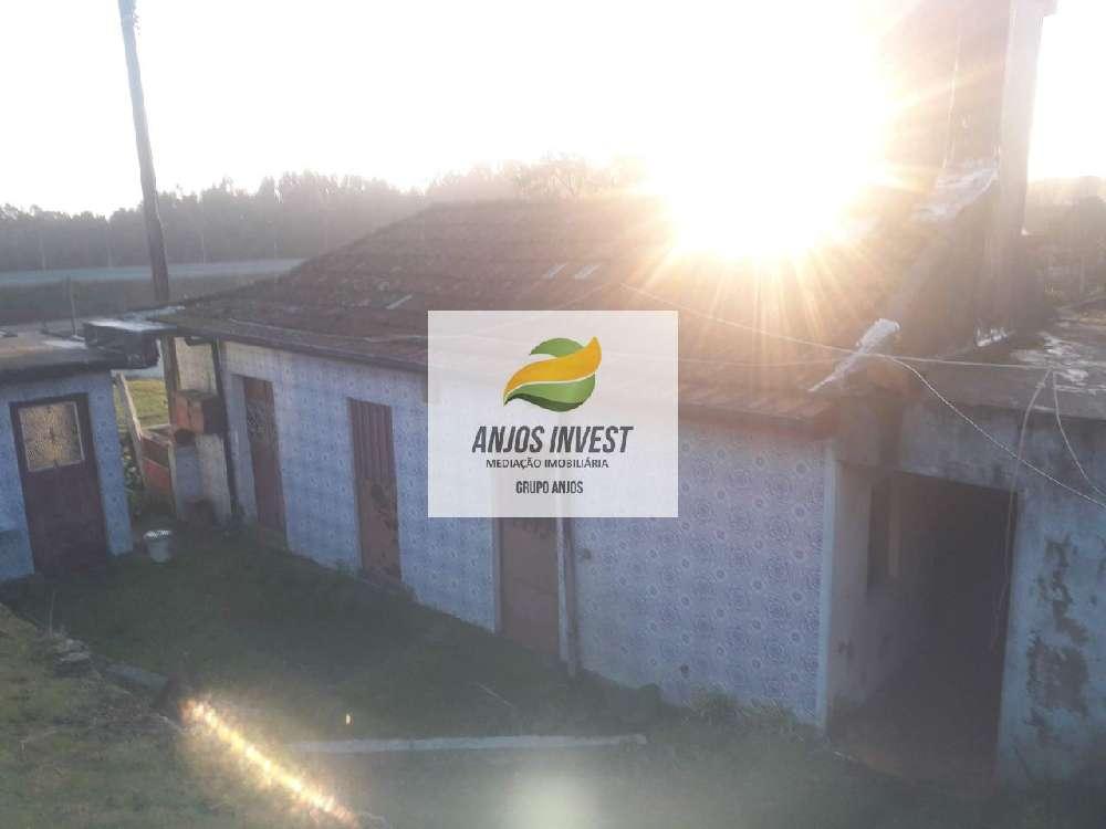 Pias Lousada casa foto #request.properties.id#