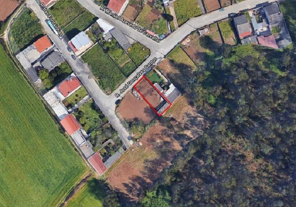 Lavra Matosinhos terrain picture 153769