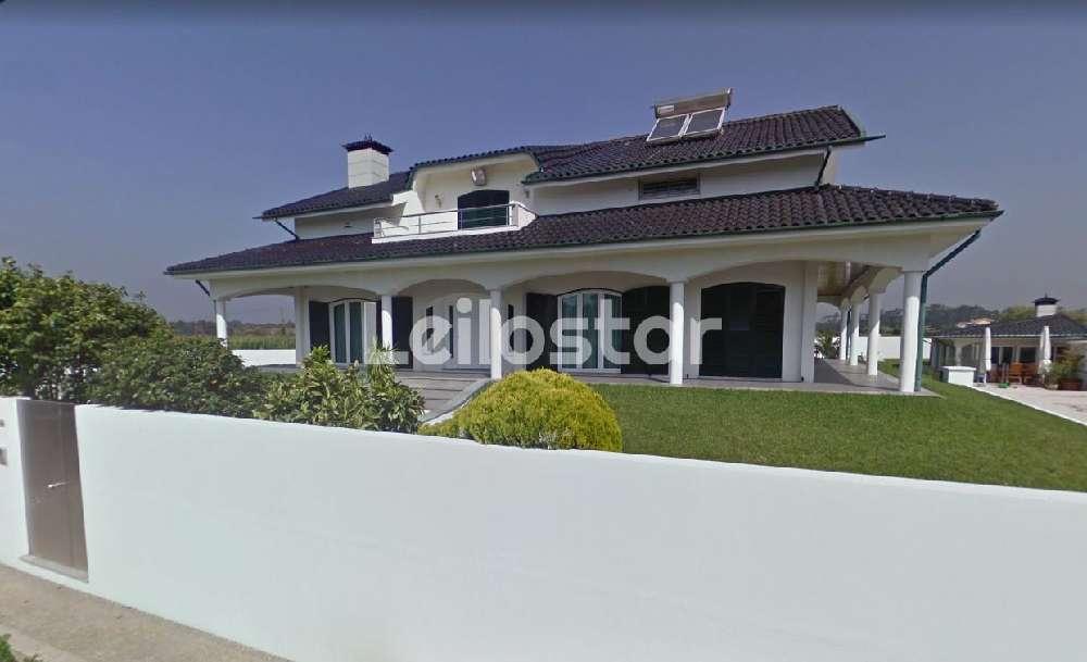 Lavra Matosinhos house picture 155232