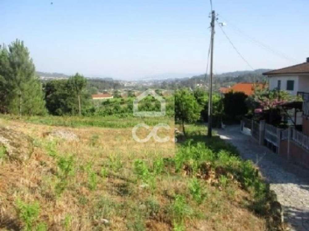 Travanca Amarante terrain photo 154924