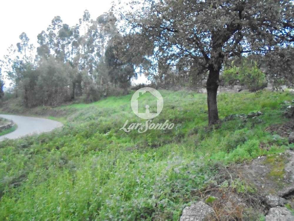 São Pedro Montalegre terreno foto #request.properties.id#