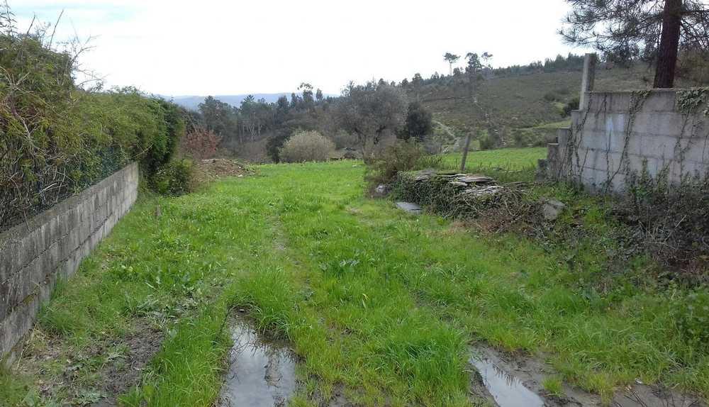 Tronqueira Vila Do Porto terrain picture 116496