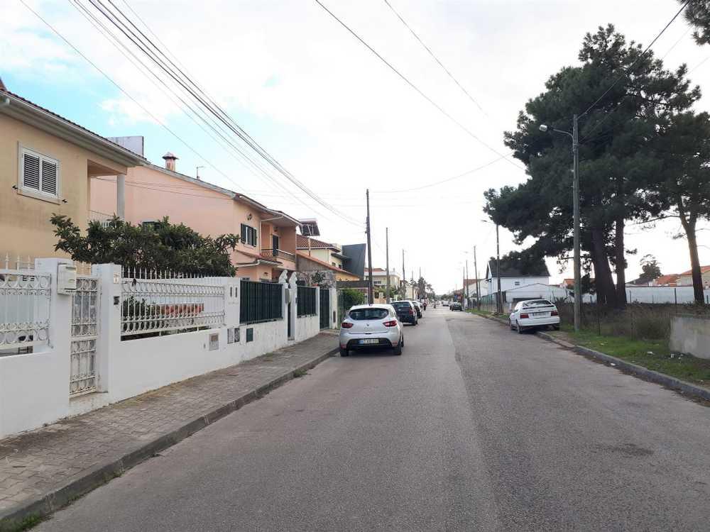 Corvo Corvo Haus Bild 116348