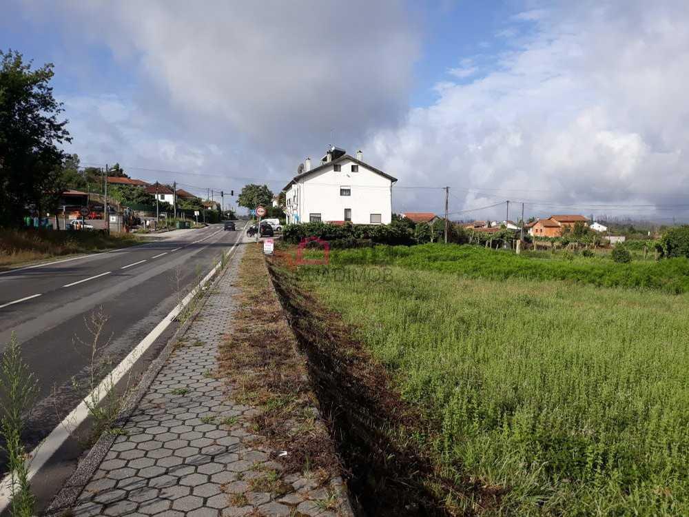 Carvalha Viseu terrain picture 116422