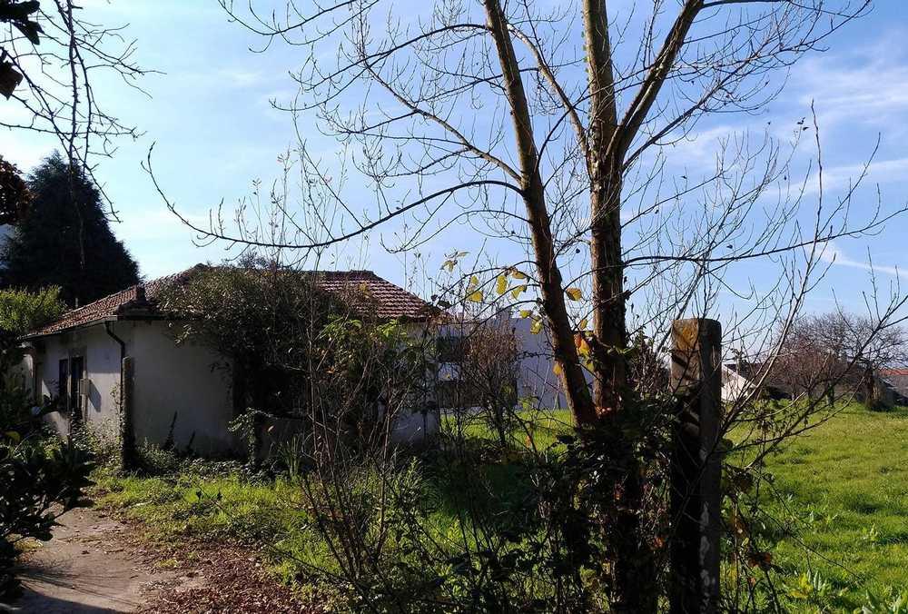 Aeroporto Vila Do Porto terrain picture 116413