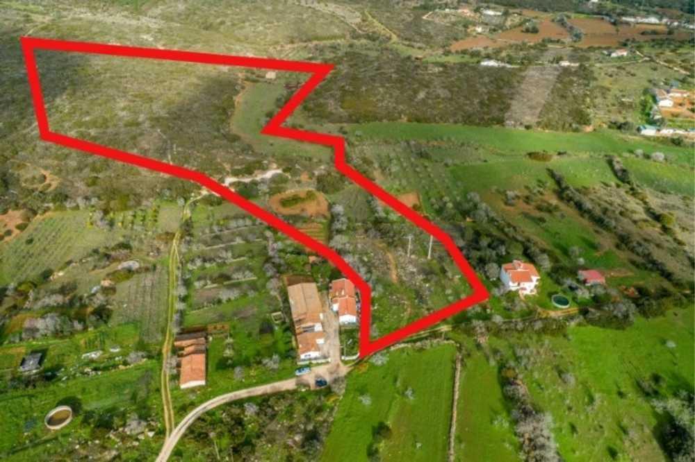 Estrada da Marinha Lagoa (Algarve) terrain picture 116433