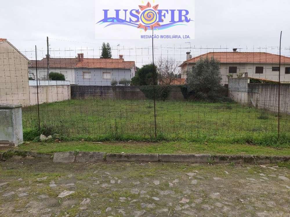 Curvos Esposende terrain picture 117467