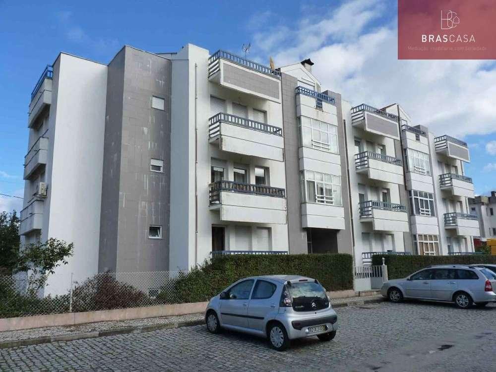 Fiais da Telha Carregal Do Sal Apartment Bild 120161