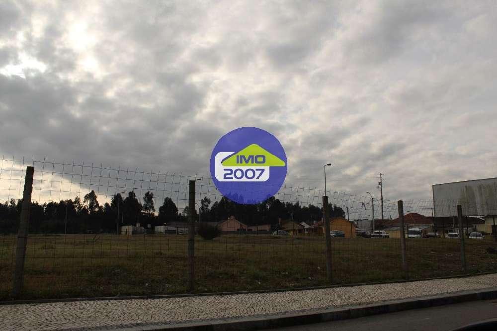 Cerca da Ponte Velha Almodôvar terrain picture 117296