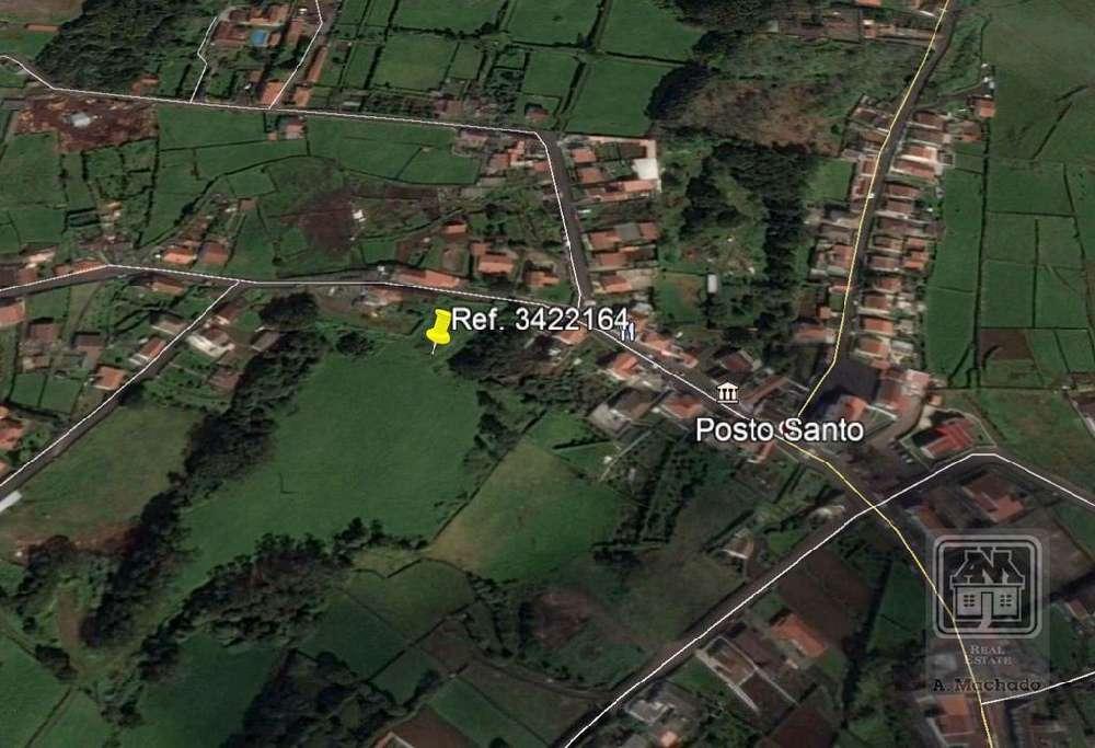 Sá Anadia terrain picture 117658