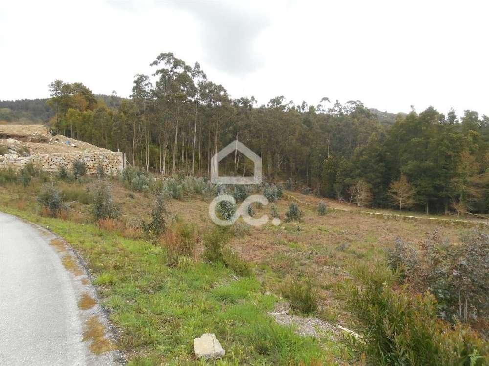 Gandra Valença terrain picture 121149