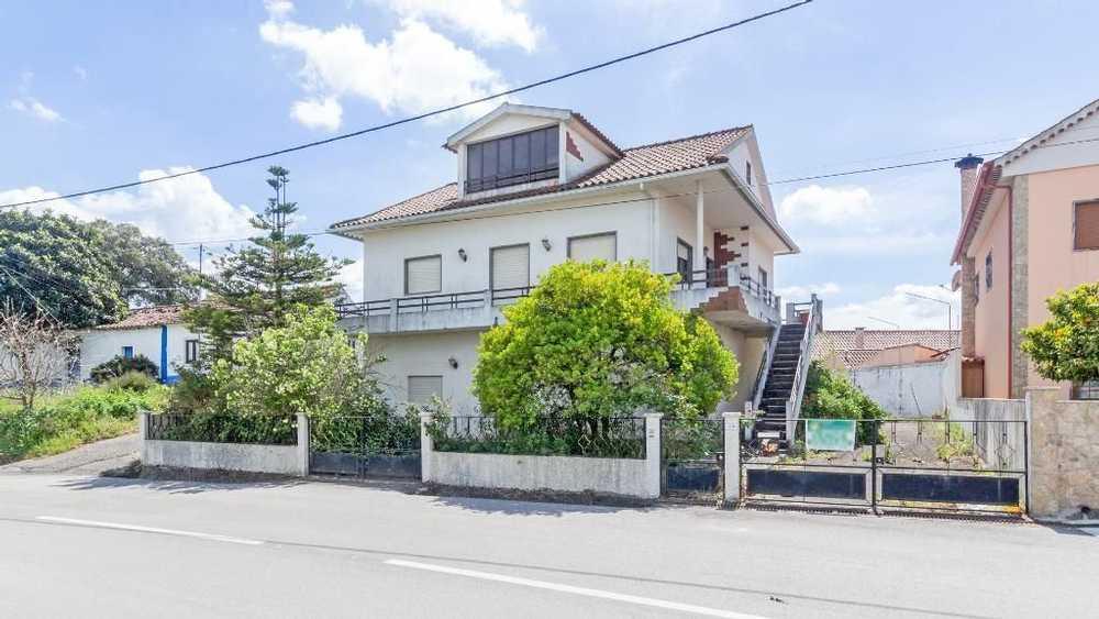 Gançaria Santarém house picture 116803