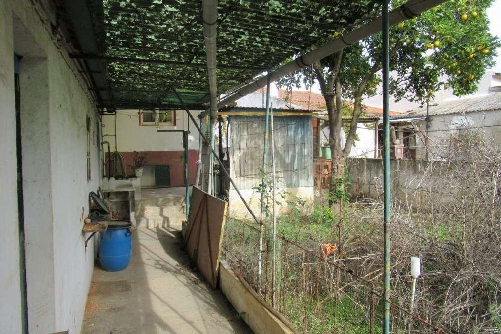 Riachos Torres Novas house picture 118213