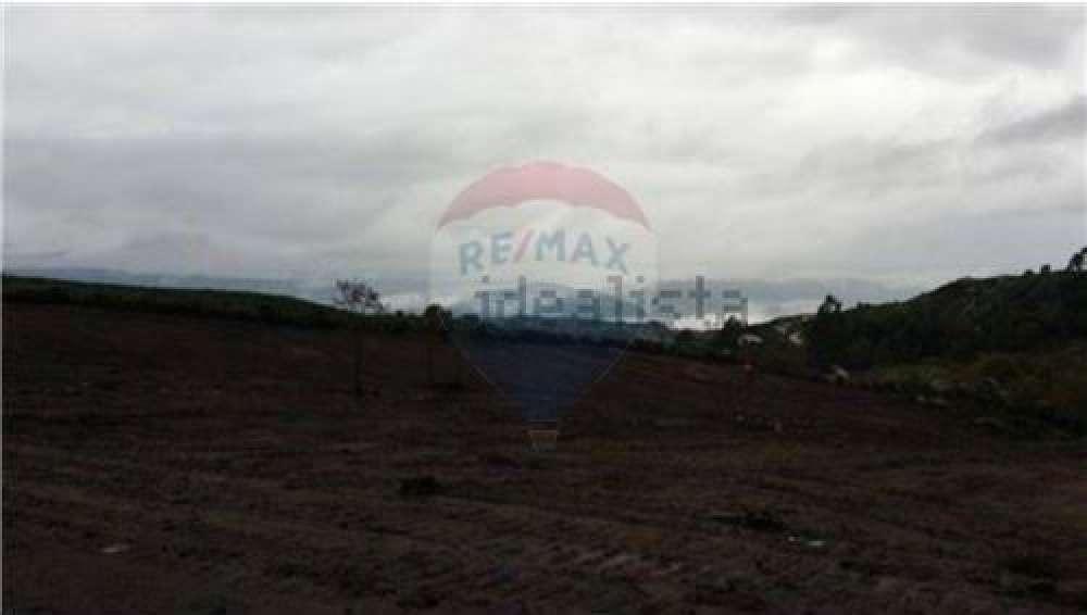 Soalhães Marco De Canaveses terrain picture 119258