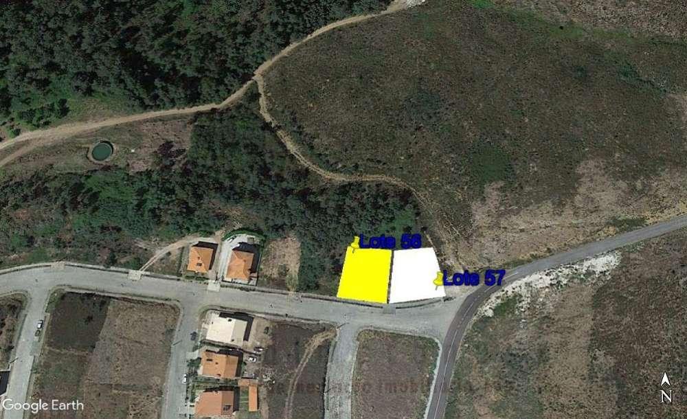 Fridão Amarante terrain picture 118173