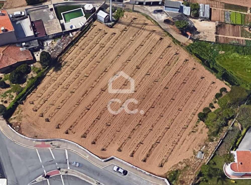 Alfena Valongo terrain picture 120742