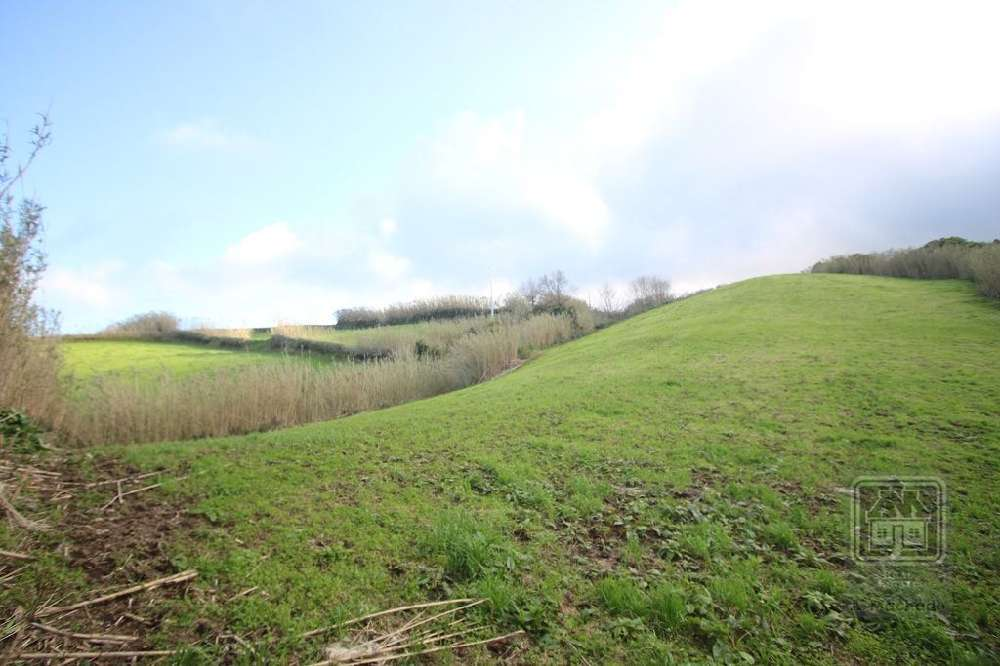 Ajuda Ponta Delgada terrain picture 126879