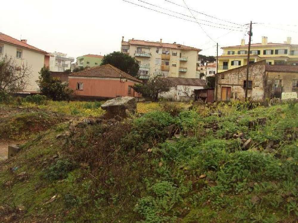 Carcavelos Cascais Grundstück Bild 117058