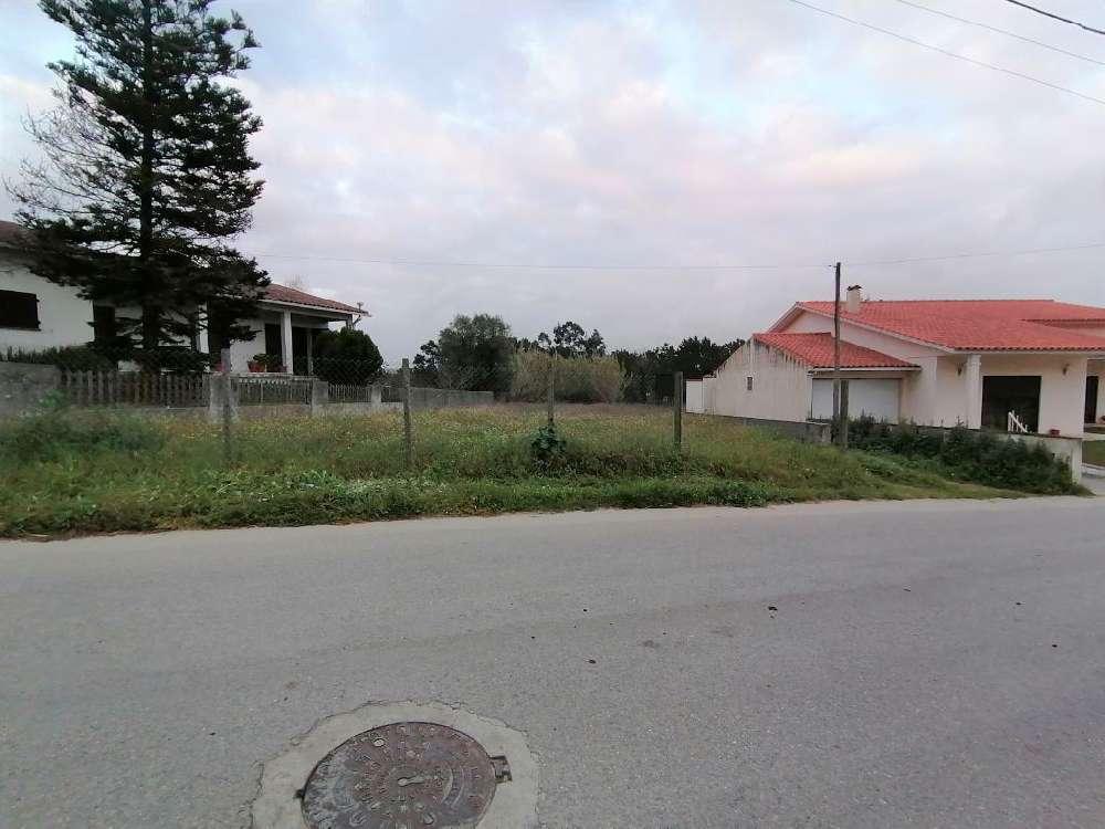 Amor Leiria terrain picture 124142