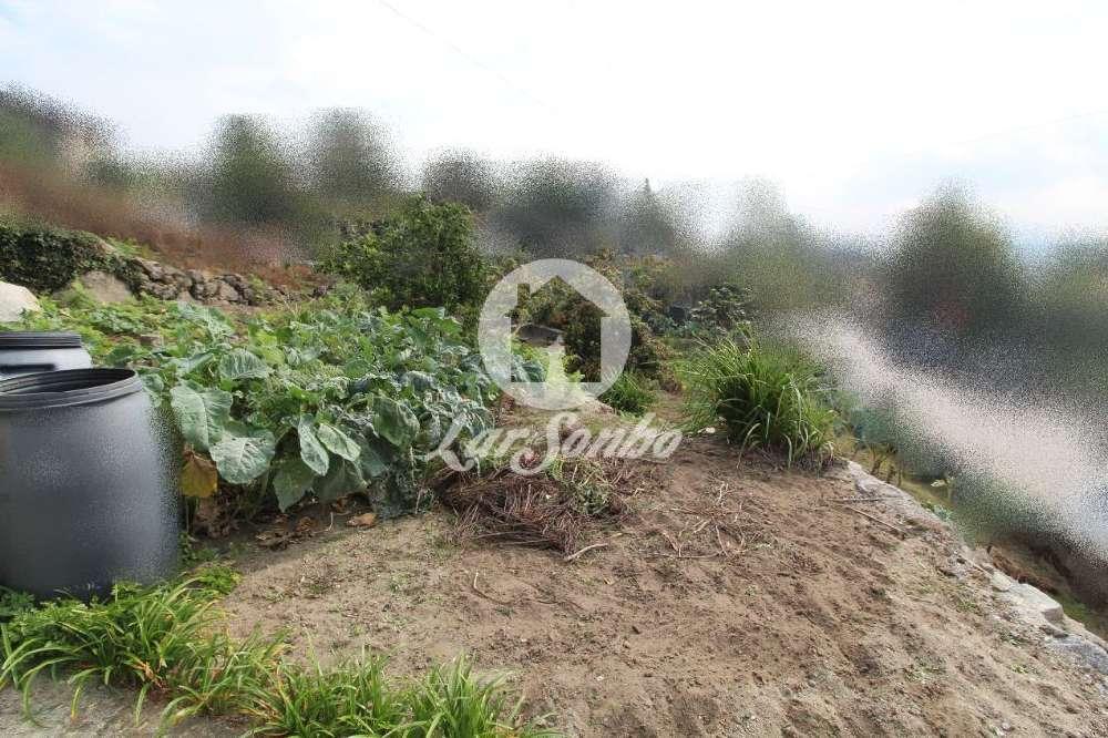 Joane Vila Nova De Famalicão terrain picture 118534