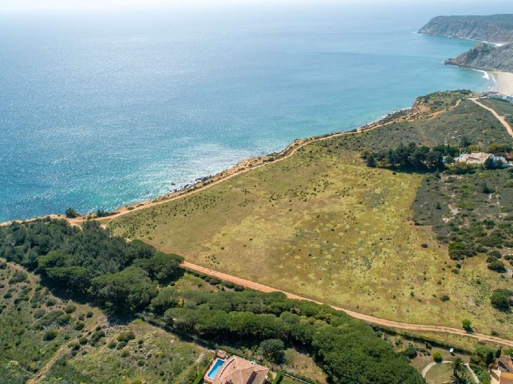 Mexilhoeira da Carregação Lagoa (Algarve) terrain picture 128163