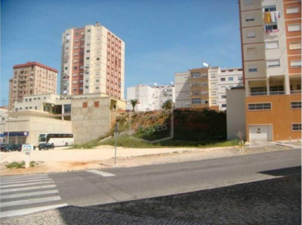 Vialonga Vila Franca De Xira terrain picture 116892