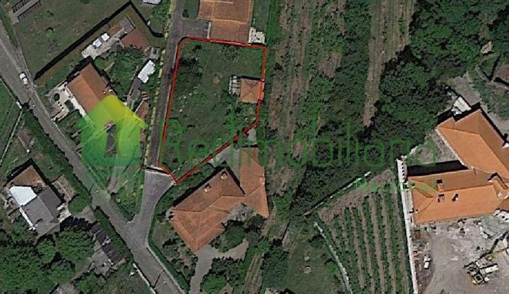 Burgães Santo Tirso terrain picture 122132